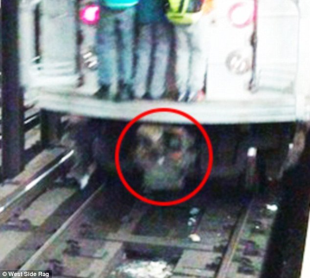 Skull under subway train